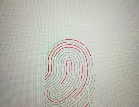 Fingerprint Authentication on Phone