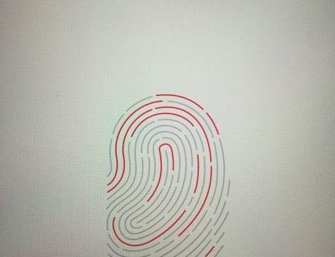 Fingerprint Authentication on Phone